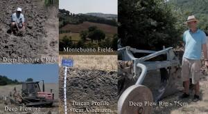 Tuscany Soil Landscape