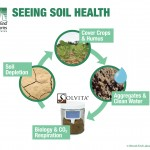 Seeing Soil Health